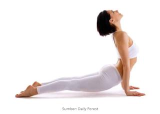 Bentuk Latihan Memperbaiki Postur Tubuh dengan Yoga