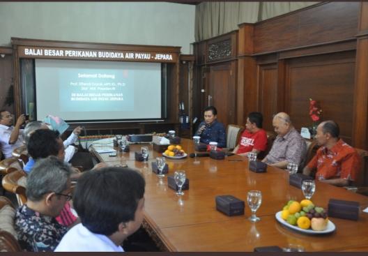 Kisah Effendi Gazali Disambut sebagai Staf Ahli Jokowi saat ke Jepara