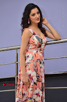Actress Richa Panai Pos in Sleeveless Floral Long Dress at Rakshaka Batudu Movie Pre Release Function  0079.JPG