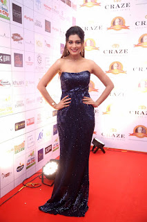 ActressPayal Rajput Stills at Dadasaheb Phalke Awards South 2019