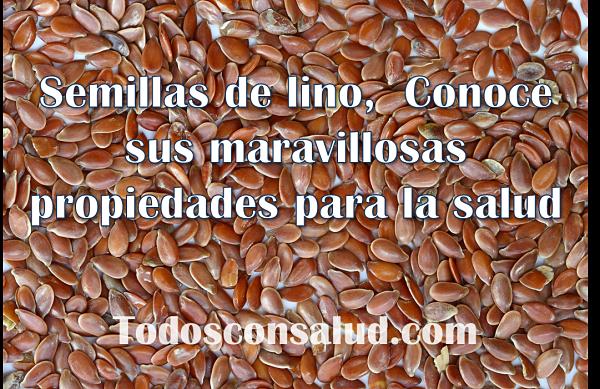 semillas de lino, propiedades y beneficios