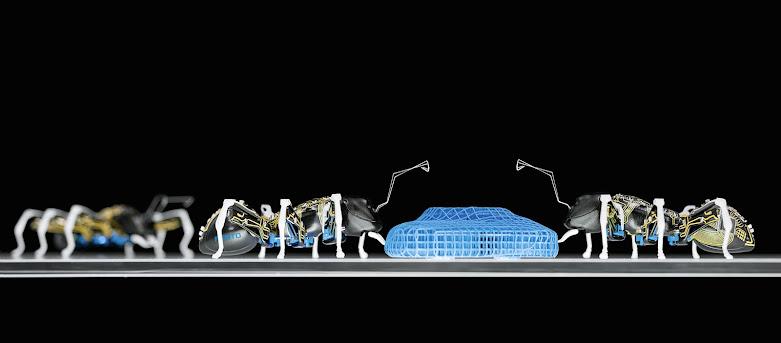 The Bionic Ant