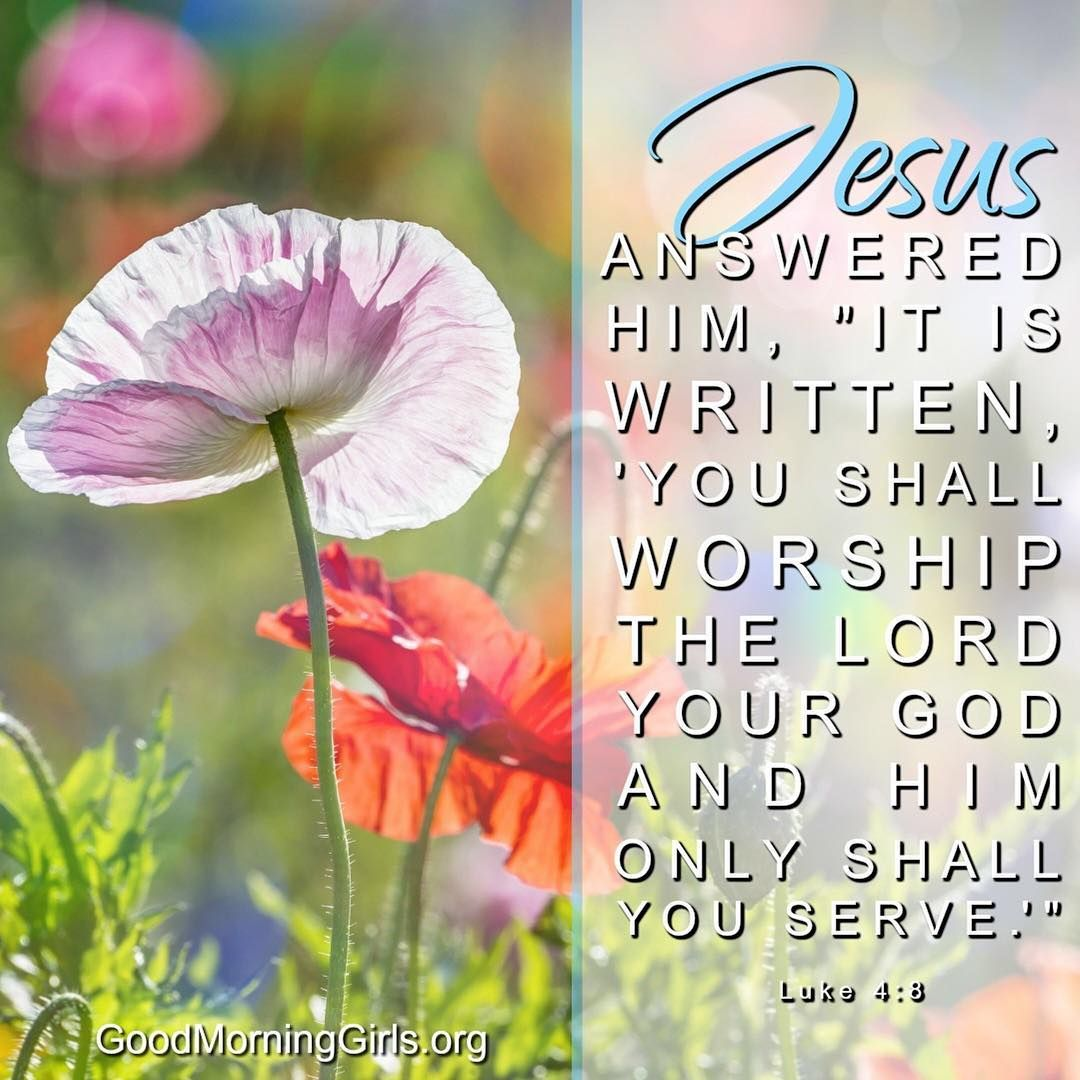 Jesus answered, 'It is written: 'Worship the Lord your God and serve him only.'' (Luke 4:8, Deuteronomy  6:13)