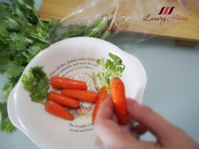 how to make potted plant baby carrots parsley