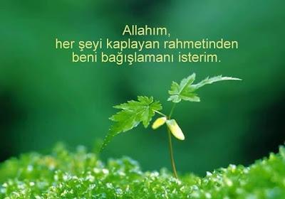 Allah'ım her şeyi kaplayan rahmetinden beni bağışlamanı isterim. dua, günün duası, dualar, yeşil zemin, yeşillik, manzara
