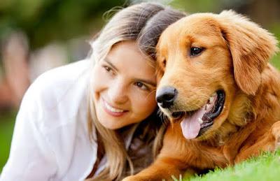 Perros amor incondicional recíproco