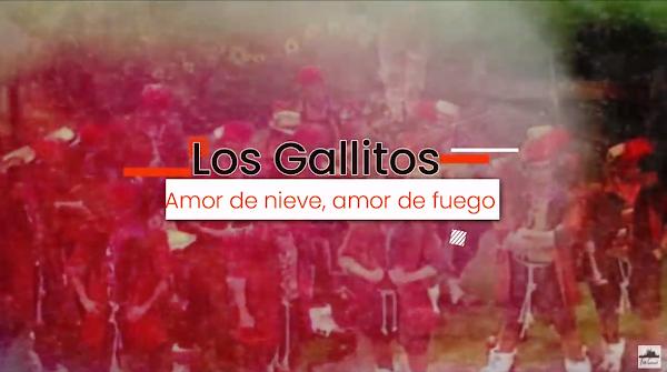 """Pasodoble con LETRA """"Amor de nieve"""". Comparsa """"Los Gallitos"""" (2014)"""
