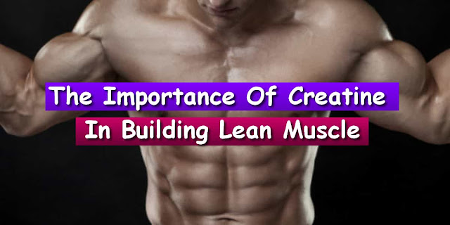 bodybuilding recipes muscle building bodybuilding motivation male bodybuilding workouts training programs bodybuilding workouts muscle building bodybuilding diet meals bodybuilding diet meals fat burning bodybuilding diet meals protein bodybuilding diet plan bodybuilding diet plan gym
