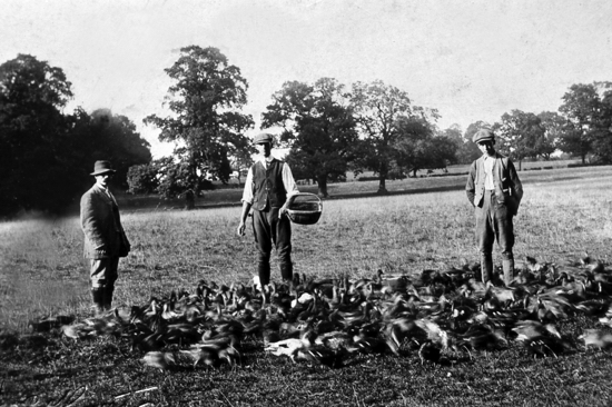 Photograph of gamekeepers at Brookmans in 1904 Image from the former NMLHS