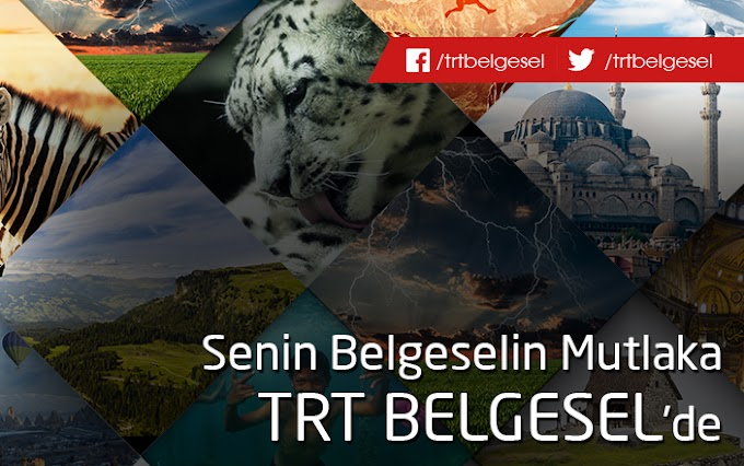 TRT Belgesel'i Seviyorum