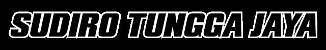 logo stj