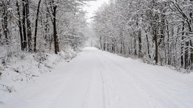 Каква ще е зимата? Кога ще вали сняг? Топ-климатолог с точна прогноза  до Коледа