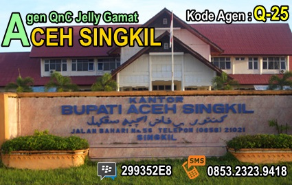 Agen QnC Jelly Gamat Aceh Singkil
