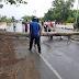Pengendara Asal Aceh Besar Tewas Tertimpa Pohon Saat Berkendara
