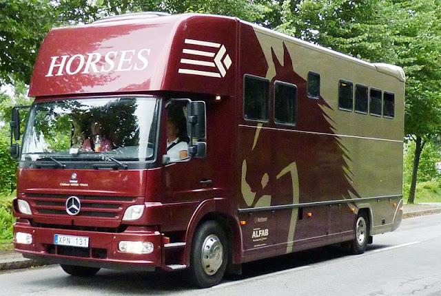 Equine Transport