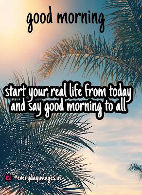 10 good morning royality free images