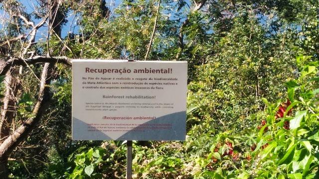 No Tour Ecológico do Bondinho Pão de Açúcar você recebe uma aula de educação ambiental