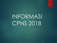 Jatah Formasi CPNS 2018: 58 Daerah Terancam Tidak Mendapatkan Kursi CPNS