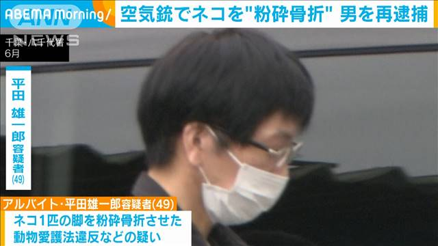 Japanese man, Hirata, admits to killing over a hundred cats with an air rifle