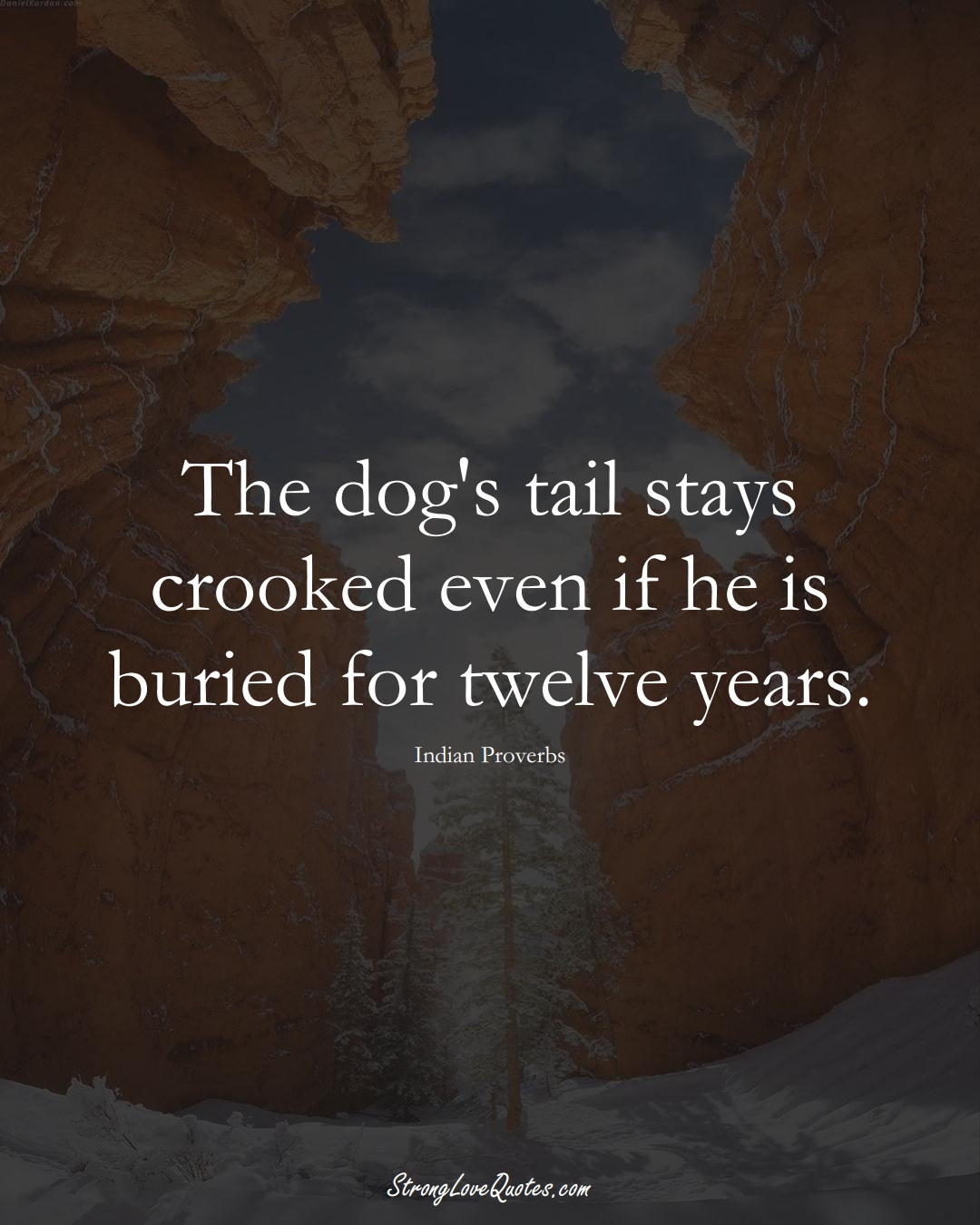 The dog's tail stays crooked even if he is buried for twelve years. (Indian Sayings);  #AsianSayings