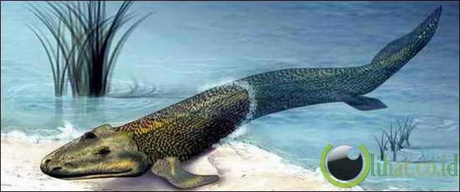 Kepunahan di Masa Akhir Devonian