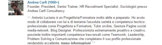 Andrea Carfì Consultancy Linkedin