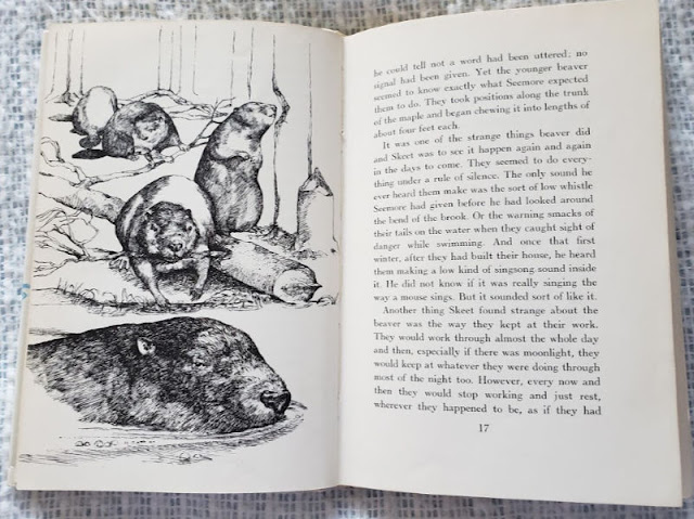 Photo of p. 16-17, Beaver Valley, Leslie Morrill's illustration, text by Walter D. Edmonds