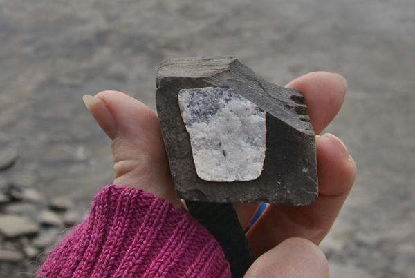 svart hvit stein