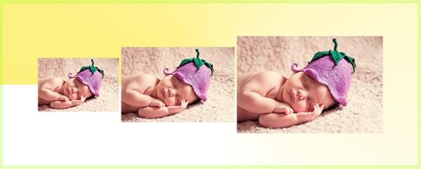 Transformasi cara merubah ukuran foto di Photoshop