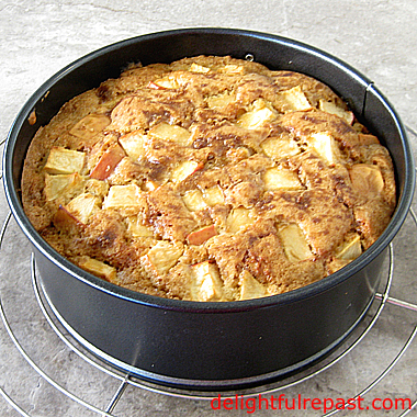 Autumn Apple Cake / www.delightfulrepast.com