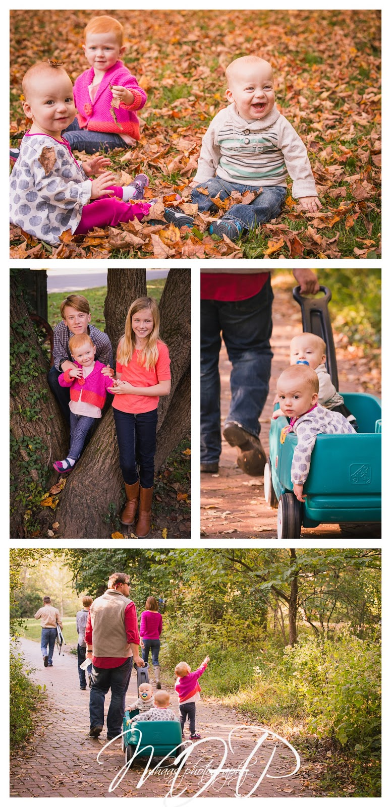 Extended Family, portraits, Louisville, Anchorage Park, large family, four generations, toddlers, Kids, grandparents, birthday gift, grandma, great grandma, great grandpa, twins, 2015, fall, Family, extended family photos louisville ky, MHPFamilies,