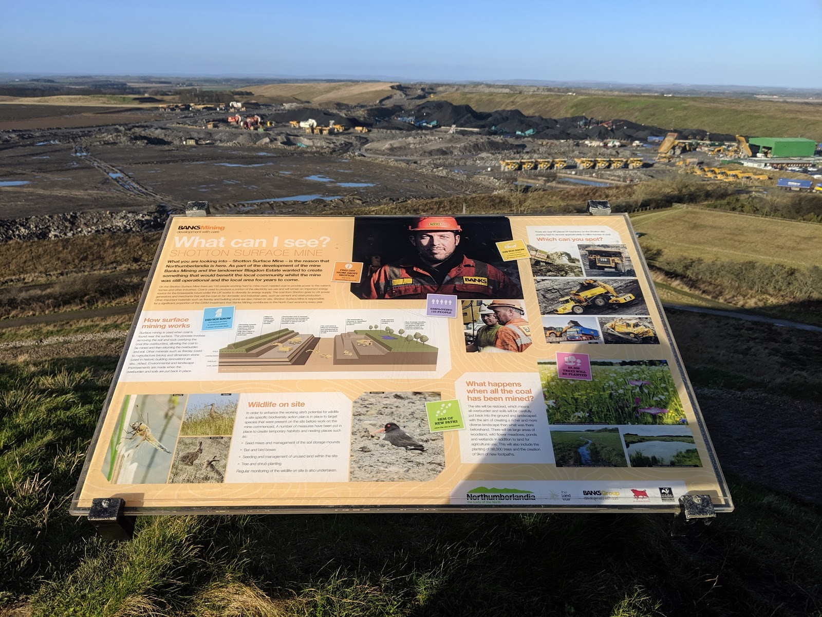 A Guide to Visiting Northumberlandia - shotton surface mine view and information
