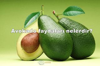 Avokado nasıl yenir faydaları nelerdir nerede satılır