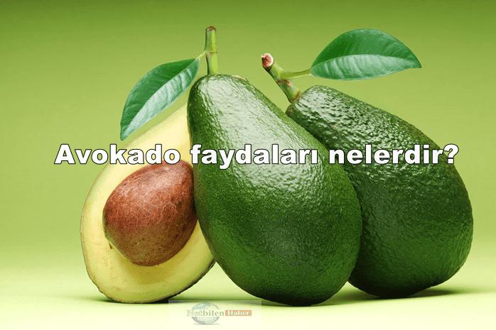 Avokado Nasıl Yenilir? Faydaları Nelerdir Nerede Satılır
