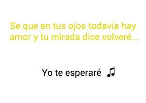 Cali El Dandee Yo Te Esperaré significado de la canción.