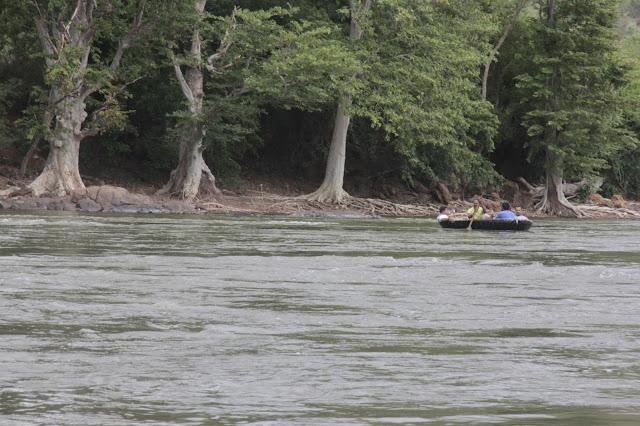 rapide rivière cauvery coracle
