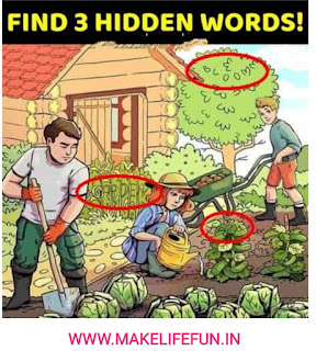 Can you find the three hidden words in the above picture  The above picture depicts a farm side day of   work in there vegetables garden.u  Share with your friends and family and see if they   can find 3 hidden words.  क्या आप उपरोक्त चित्र में तीन छिपे हुए शब्द पा सकते हैं   उपर्युक्त चित्र में एक कृषि पक्ष का दिन दर्शाया गया है   सब्जियों के बगीचे में काम करें   अपने दोस्तों और परिवार के साथ साझा करें और देखें कि क्या वे   3 छिपे हुए शब्द पा सकते हैं।, Puzzles world, home, logic, whatsapp game, math puzzles, riddles, joks, submit a puzzles, Emoticons Quiz,  Ek Colour Choose Karo Game, Puzzles Riddles Logic Puzzle Who am I ? Quiz Picture Puzzle Word Puzzle Maths Puzzle Emoticons Quiz Brain teaser Jokes Whatsapp Games Guess Puzzles answers Inspirational Number Puzzle Mystery Puzzle funny images Informational River Crossing Puzzle Akbar-Birbal Lateral Thinking Hindi Puzzles Interview Puzzles Sherlock Holmes Good Morning Messages Expressive Whatsapp Status Illusion images Trivia Disclaimer Good Day Message Kids Puzzle Quotes Rebus