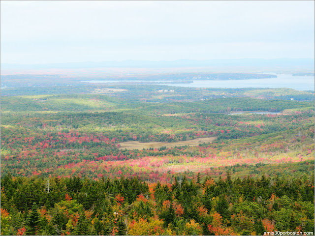 Vista desde Cadillac Mountain en el Parque Nacional Acadia en Maine