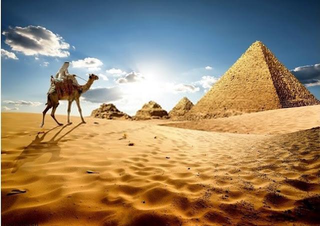 كم تمتلك مصر من راقصات؟