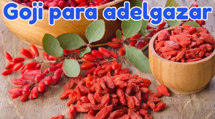 goji berries perder peso