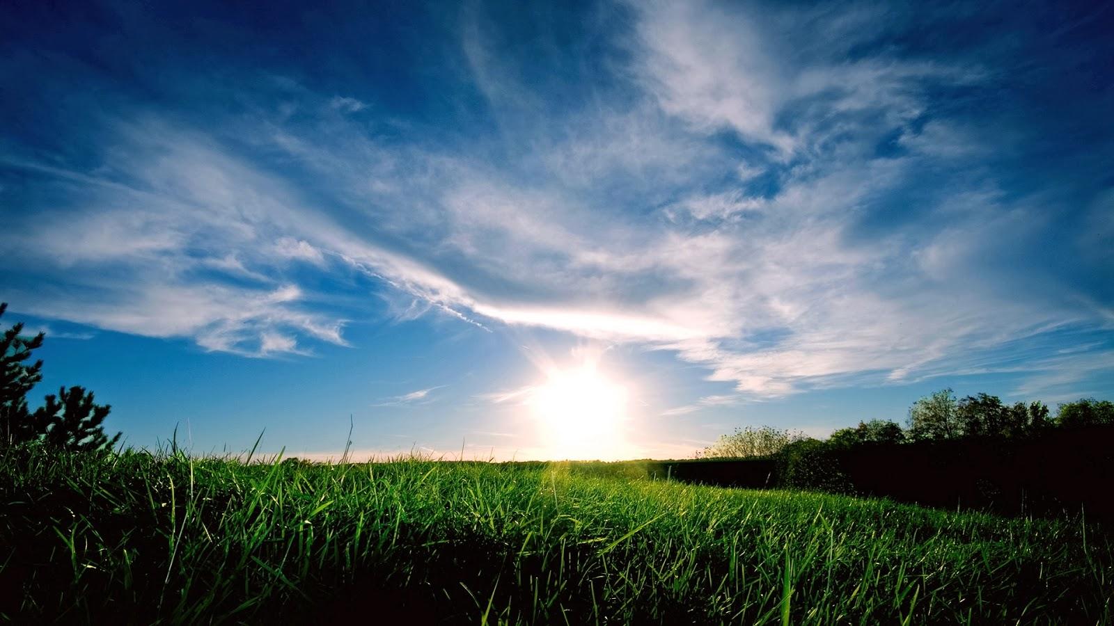 Achtergrond met Opkomende zon in landschap met gras