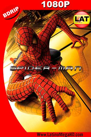 El Hombre Araña (2002) Latino HD BDRIP 1080P ()