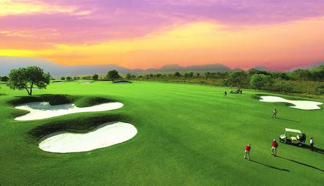 Cát trắng sân golf