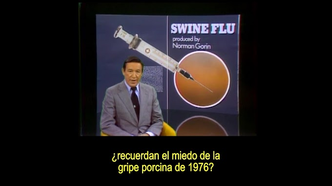 Reportaje gripe porcina de 1976
