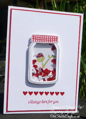 Sharing Sweet Thoughts Card - Ladybird in Jam Jar Shaker Card