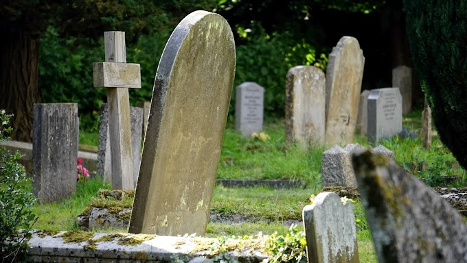 Dust To Dust: Is There Life After Death?