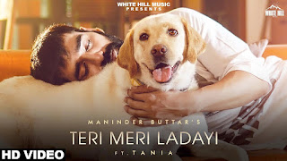 Teri Meri Ladayi Song Lyrics In Hindi Manindar Buttar ft.tania & MixSingh