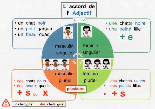 Przymiotniki - uzgadnianie przymiotnika - Francuski przy kawie
