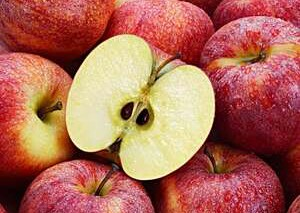 Poisonous: See why you should not eat Apple seeds.