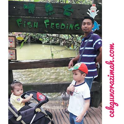 farm in the city, mini zoo, tempat menarik seri kembangan, longkang fishing, fish feeding, bergambar dengan burung hantu, bergambar dengan burung kakak tua